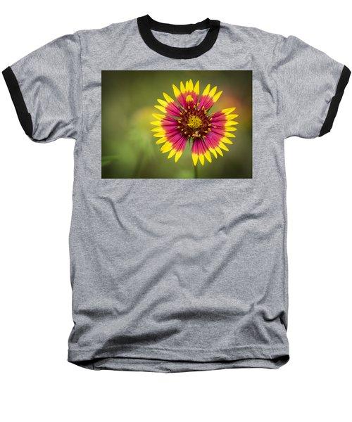Spring Indian Blanket Baseball T-Shirt