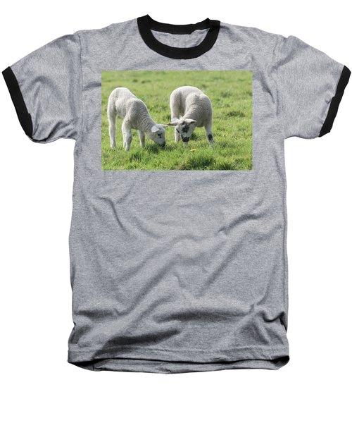 Baseball T-Shirt featuring the photograph Spring Lambs by Scott Carruthers