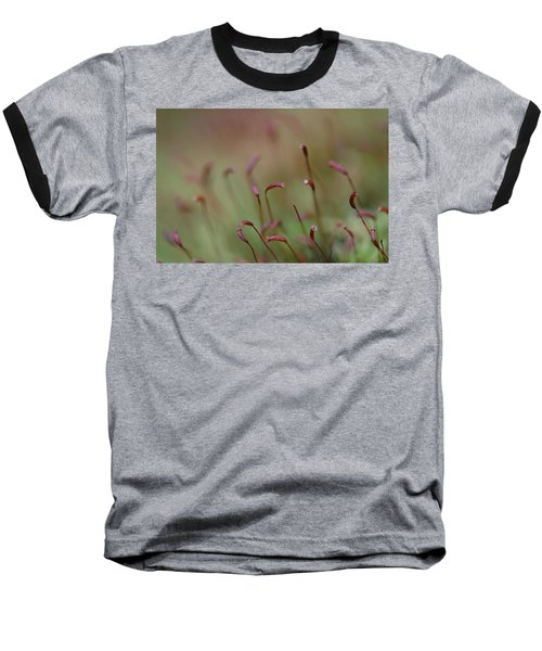 Spring Macro5 Baseball T-Shirt by Jeff Burgess