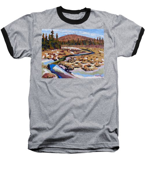 Spring Marsh Algonquin Baseball T-Shirt