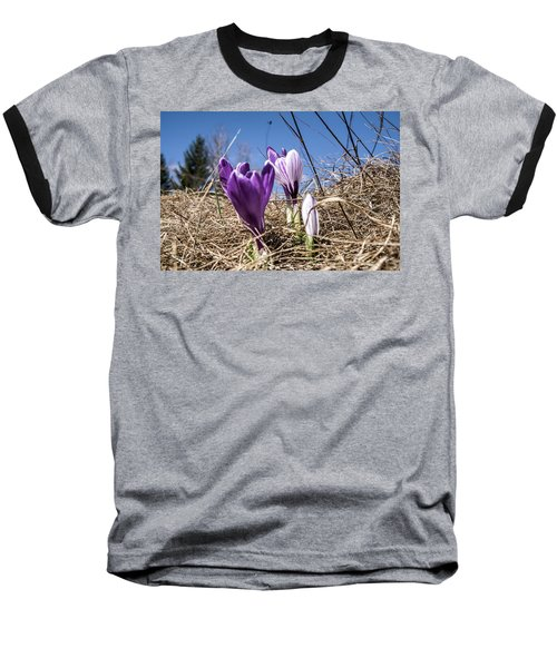Spring On Bule Baseball T-Shirt