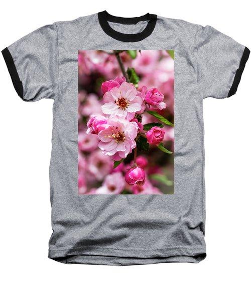 Spring Pink Baseball T-Shirt by Teri Virbickis