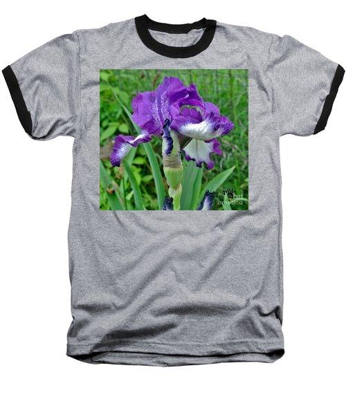 Spring Purple Iris Baseball T-Shirt by Marsha Heiken