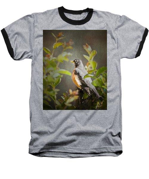 Spring Robin Baseball T-Shirt
