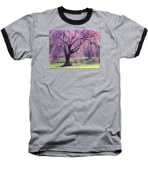 Spring Sensation Baseball T-Shirt by Mikki Cucuzzo