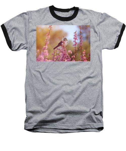 Spring Sparrow Baseball T-Shirt by Lynn Bauer