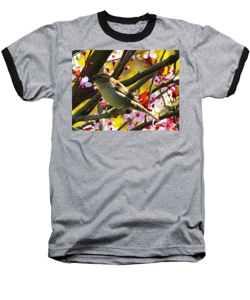Spring Sparrow Baseball T-Shirt