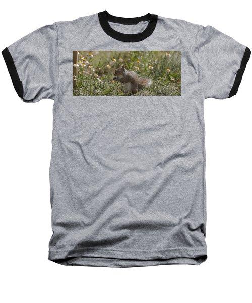 Spring Squirrel Baseball T-Shirt by Diane Giurco