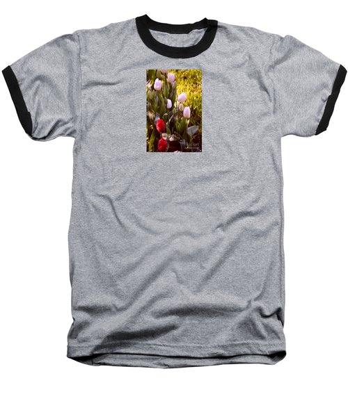Baseball T-Shirt featuring the photograph Spring Time Tulips by Susanne Van Hulst