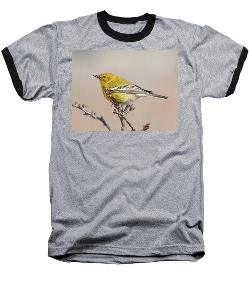 Spring Warbler 1 2017 Baseball T-Shirt by Lara Ellis