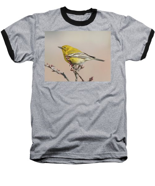 Baseball T-Shirt featuring the photograph Spring Warbler 1 2017 by Lara Ellis