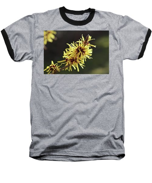 Baseball T-Shirt featuring the photograph Spring by Wilhelm Hufnagl