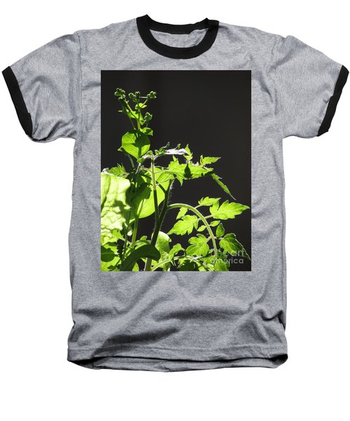 Spring103 Baseball T-Shirt by En-Chuen Soo