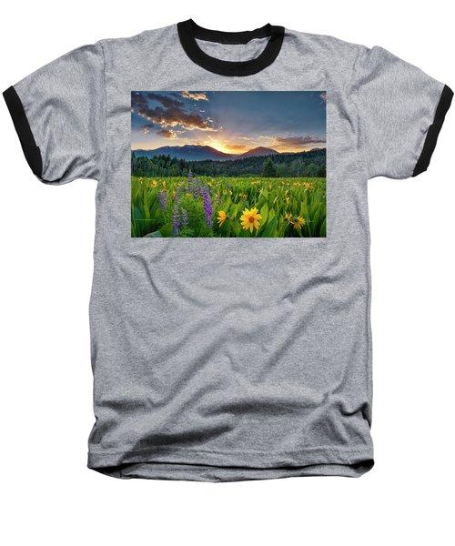 Spring's Delight Baseball T-Shirt by Leland D Howard