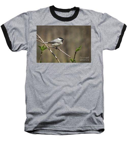 Springtime Chickadee Baseball T-Shirt