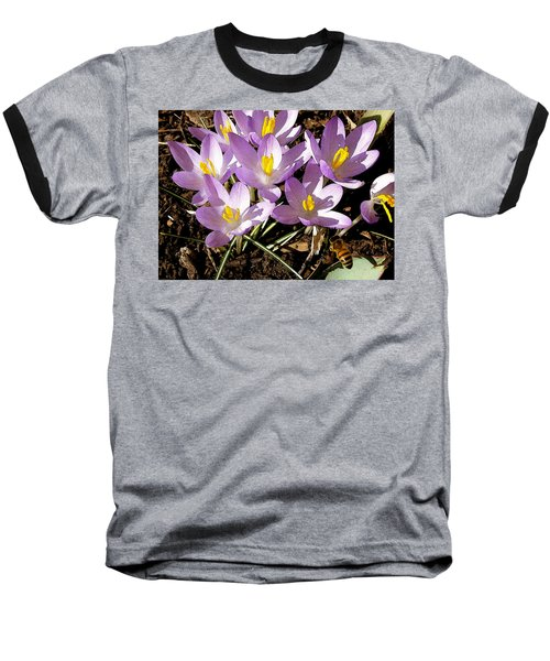 Springtime Crocuses  Baseball T-Shirt