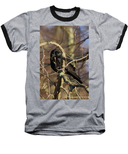Baseball T-Shirt featuring the photograph Springtime Crow by Bill Wakeley