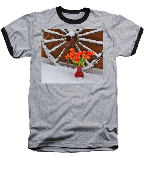 Springtime In Colorado Baseball T-Shirt