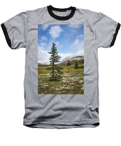 Spruce Tree In Summer Baseball T-Shirt