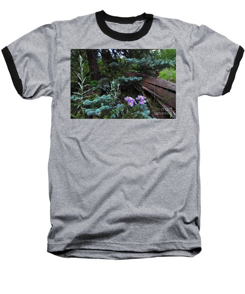 Spruced Up Asters Baseball T-Shirt