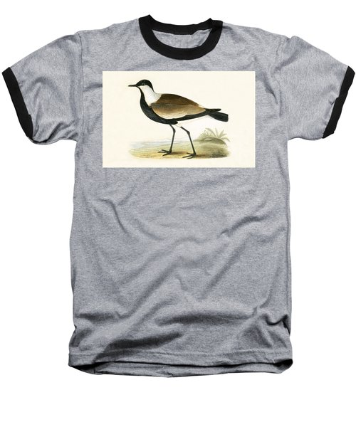 Spur Winged Plover Baseball T-Shirt by English School