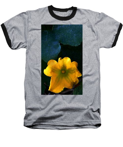 Baseball T-Shirt featuring the photograph Squash Blossom by Lenore Senior