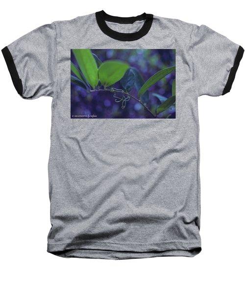 squiggle Vine Baseball T-Shirt by Stefanie Silva