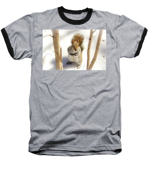 Squirrel In Snow Baseball T-Shirt