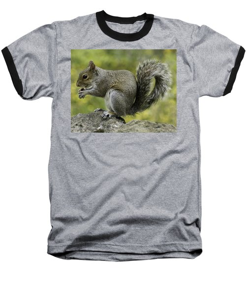 Squirrel, On The Hop Baseball T-Shirt