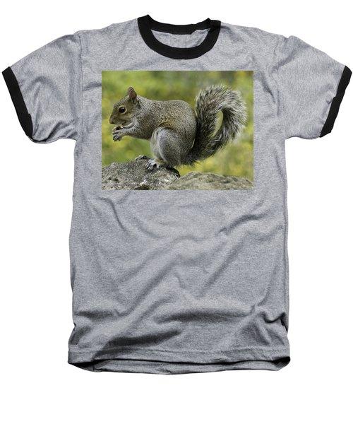 Squirrel, On The Hop Baseball T-Shirt