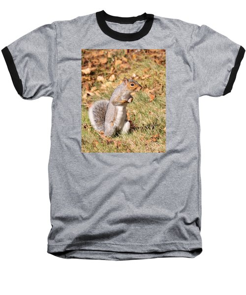 Squirrely Me Baseball T-Shirt by Debbie Stahre
