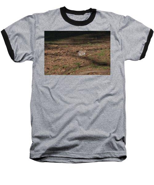 Squirrrrrrel? Baseball T-Shirt by John Rossman