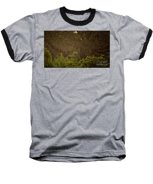 Sri Lankan Leopard  Baseball T-Shirt