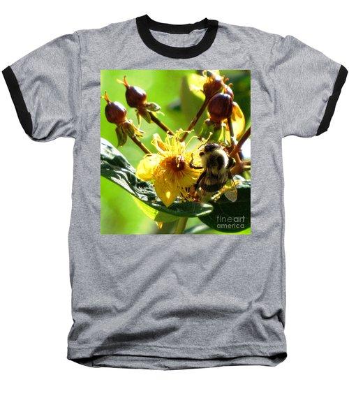 Baseball T-Shirt featuring the photograph St. John's Wort by Melissa Stoudt