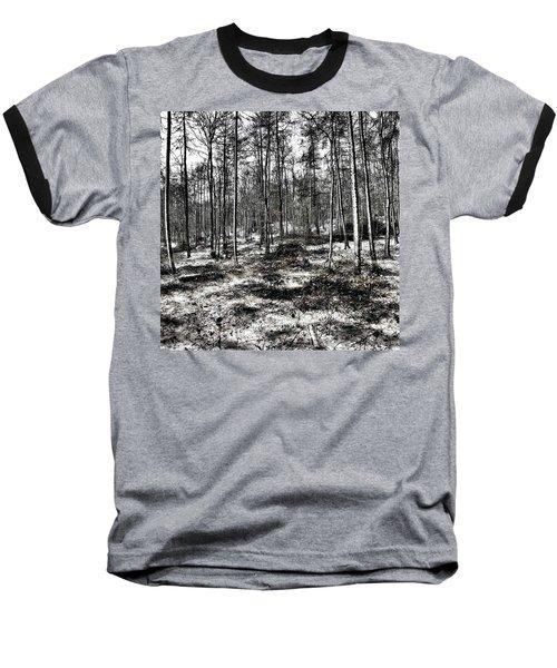 St Lawrence's Wood, Hartshill Hayes Baseball T-Shirt by John Edwards