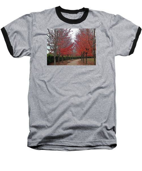 St. Louis, November 2015 Baseball T-Shirt