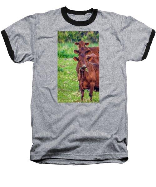 Stacked Up Cows          Baseball T-Shirt