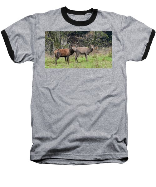 Stag And Doe  Baseball T-Shirt
