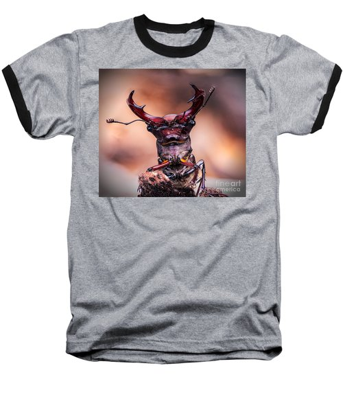 Stag Beetle Stare Down Baseball T-Shirt