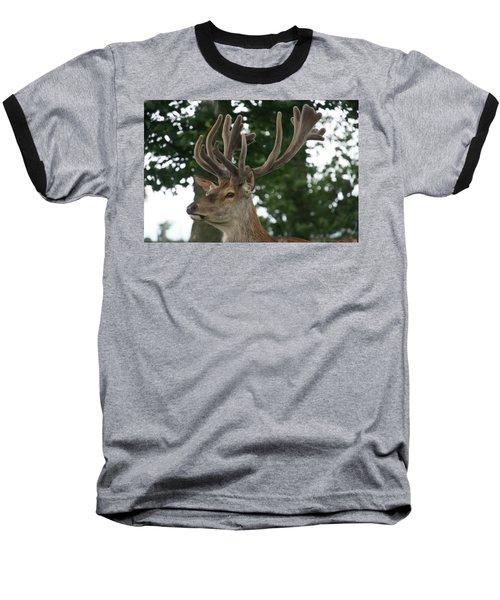Stag Head. Baseball T-Shirt