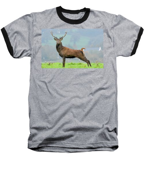 Stag Baseball T-Shirt