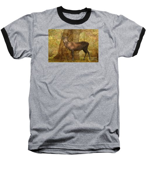 Stag Party Autumn Shade Baseball T-Shirt by Linsey Williams