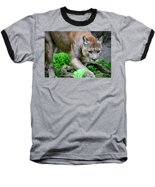 Stalking Baseball T-Shirt