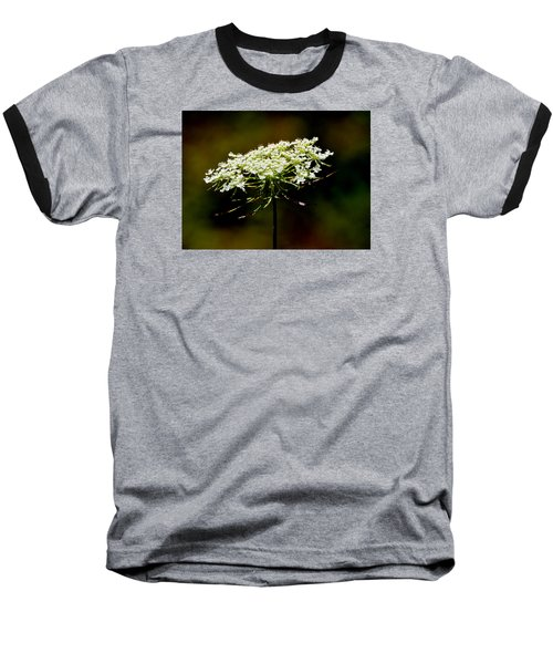 Stamens Of Queen Annes Lace 2  Baseball T-Shirt by Lyle Crump