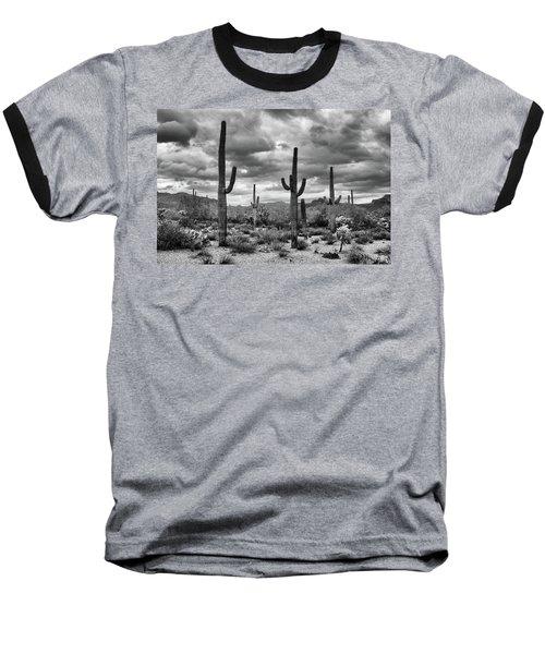 Standing Saquaros Baseball T-Shirt by Monte Stevens