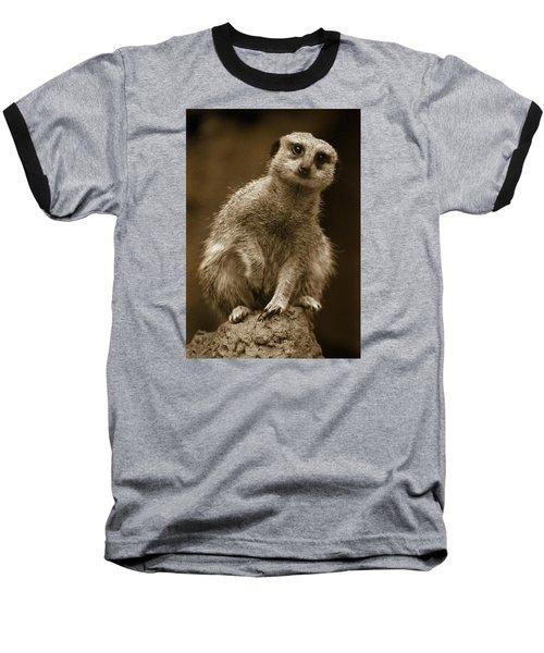 Standing Sentry Baseball T-Shirt