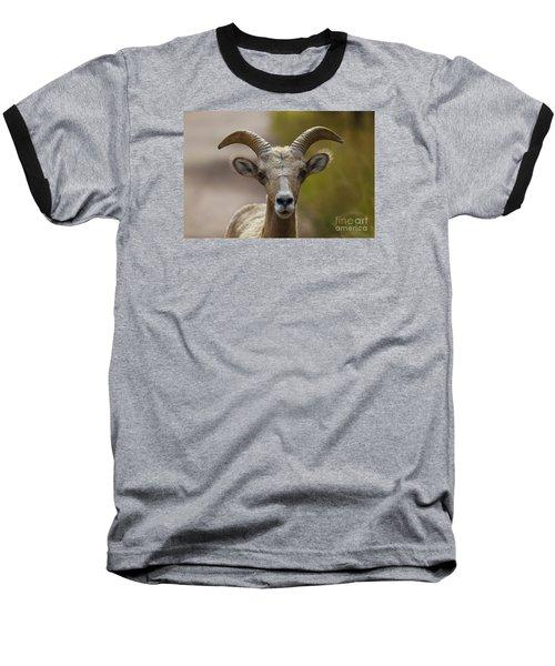 Stare Down Baseball T-Shirt