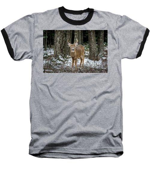 Staring Buck Baseball T-Shirt