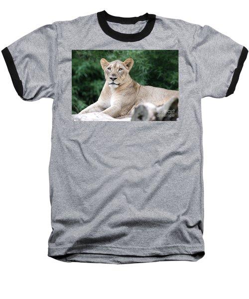 Staring Baseball T-Shirt
