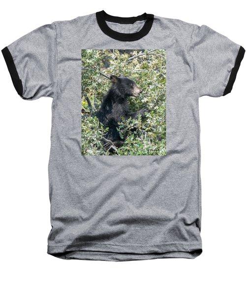 Baseball T-Shirt featuring the photograph Startled Black Bear Cub by Stephen  Johnson